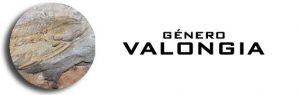 Género Valongia