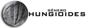 GENERO HUNGIOIDES